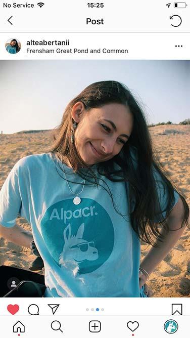 Alpacr on Tour